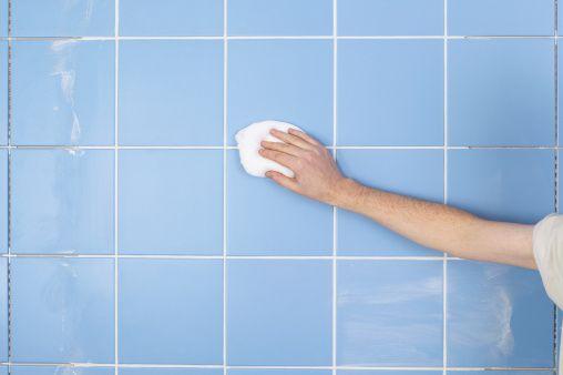 """Has estado trabajando todo el día y éstas extremadamente cansada, sudada, y sucia. ¡Necesitas una ducha! ¿Pero qué se supone que debes hacer si tu ducha está más sucia que tú? Limpiarla, por supuesto.  """"Si el artículo fue de tu interés compártelo con tus amigos"""" Si te gusta el contenido e información de …"""