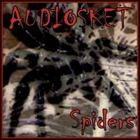 SPIDERS by AUDIOSKET on SoundCloud