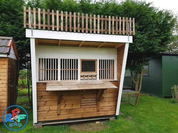 Pigeon Loft Design Ideas And Pigeon Loft Plan Pigeon Loft