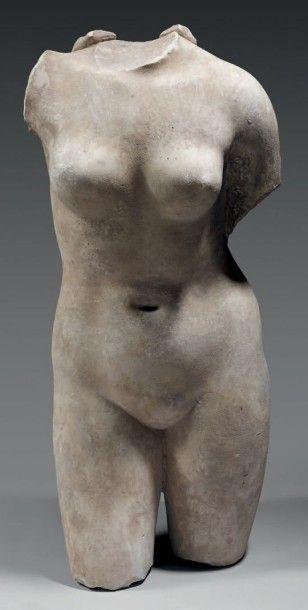 Torse de Vénus anadyomène, légèrement déhanchée. Il s'agit probablement d'une Aphrodite de Cnide dans le style Praxitèle. Marbre blanc. Art romain, Ier - IIème siècle après J.-C. (Léger dépôt calcaire)… - Thierry de Maigret - 17/12/2014