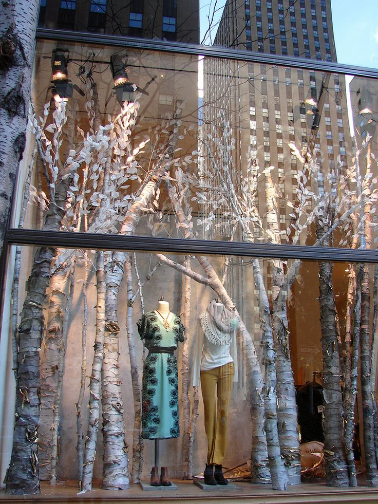 Anthropologie Window Birch Tree Forest Display