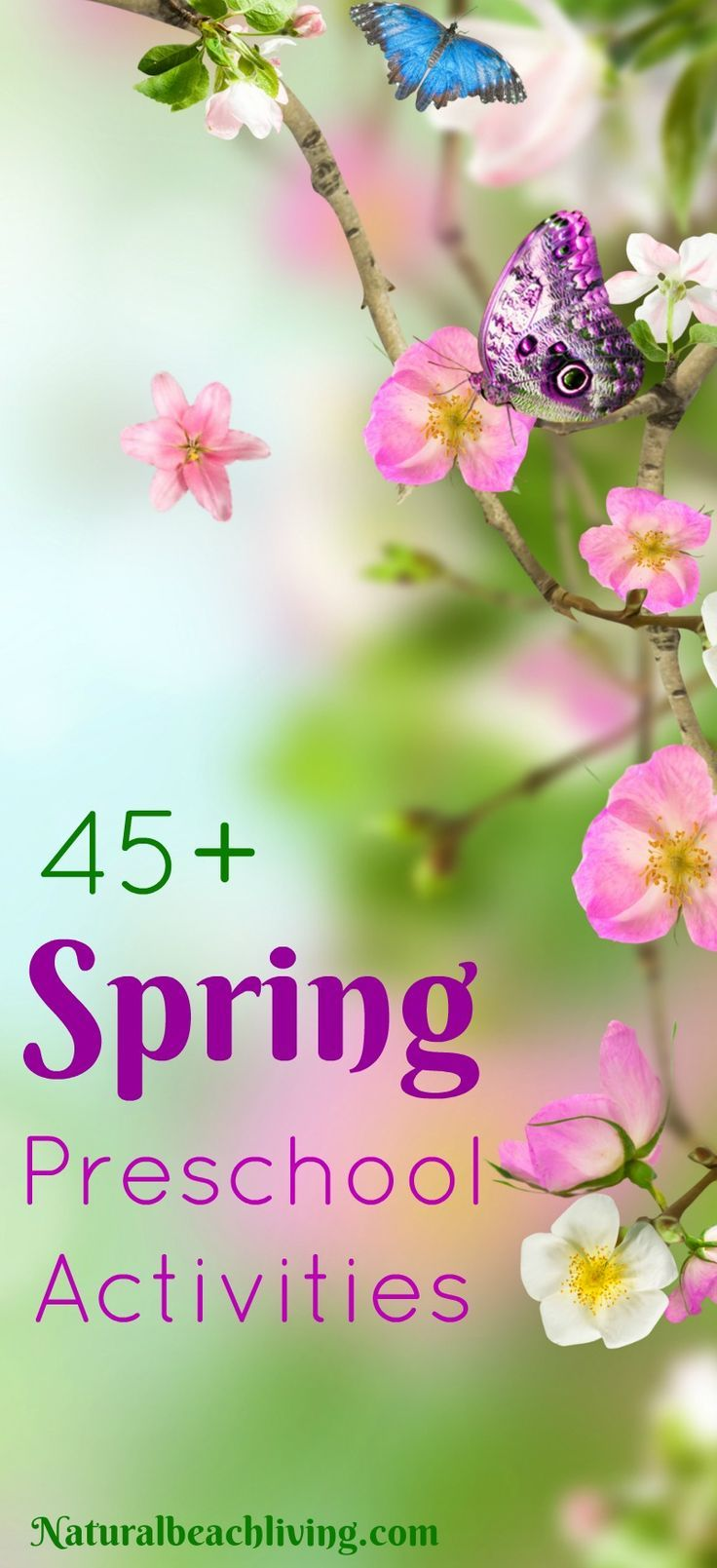 233 best Spring Theme- Weekly Home Preschool images on Pinterest ...
