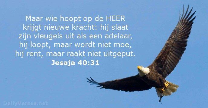 Jesaja 40:31 - dailyverses.net