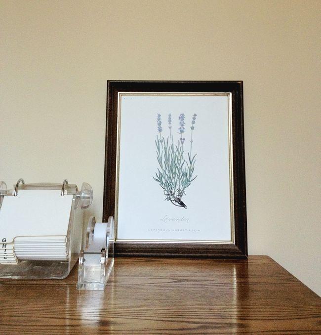 free botanical printables!!
