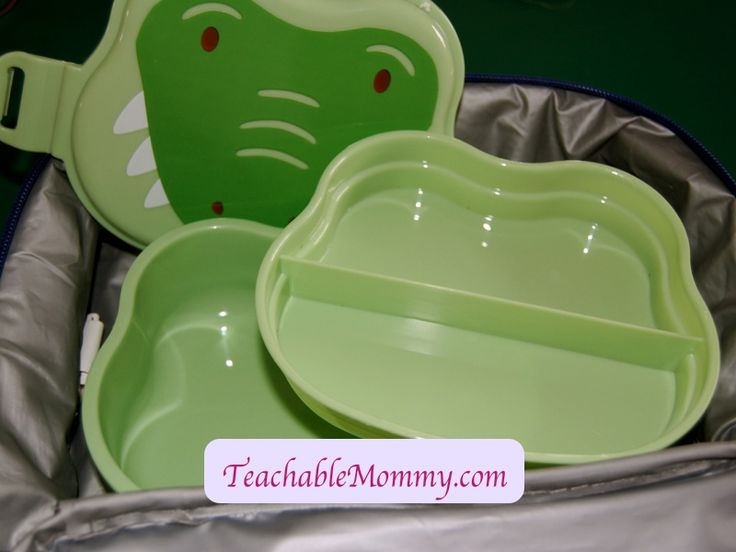 Green Sprouts On Safari Bento Box, kid lunches