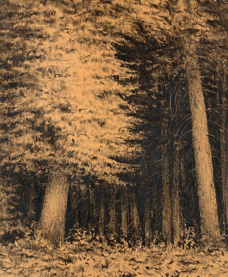 LEON WYCZÓŁKOWSKI (1852 - 1936)  WNĘTRZE LASU   tusz, papier / 60 x 50 cm