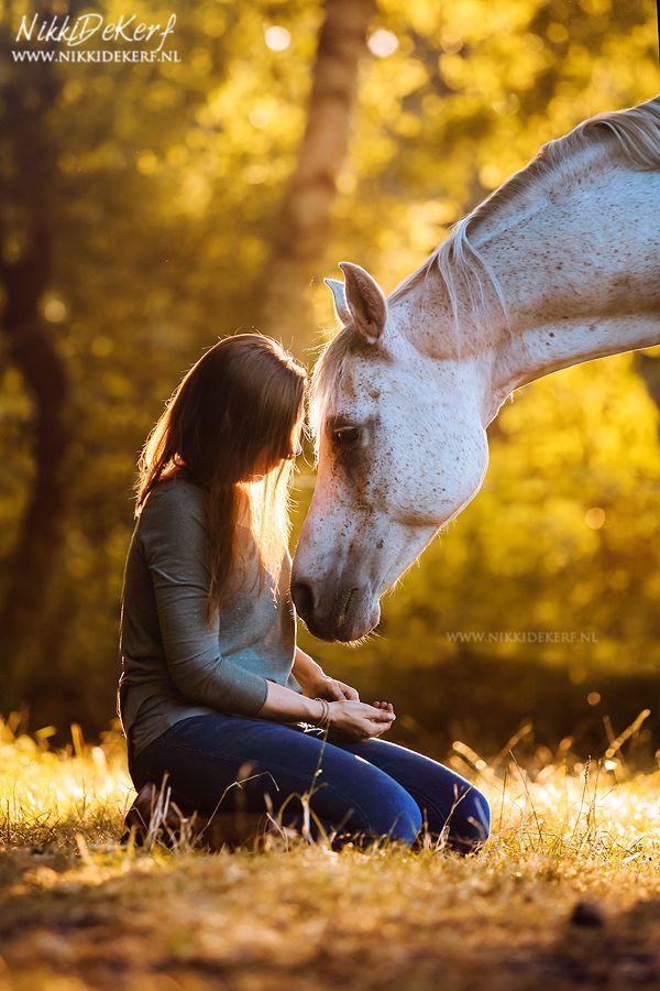 Ein Sonnenuntergang Pferd Fotoshooting mit Sabine & Caliente Schlüsselwörter: Sonnenuntergang Fotografie, h …