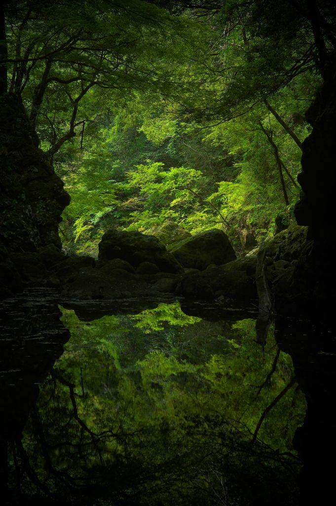 k641739021:  (via 逢魔が淵の写真(画像) 写真ID:3776313- 写真共有サイト:PHOTOHITO)