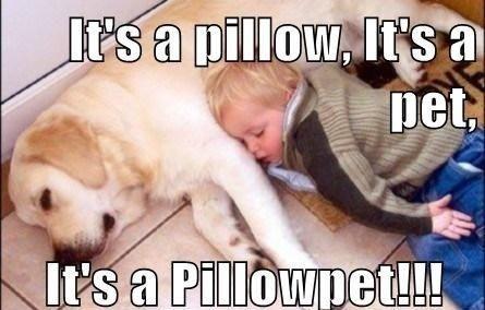 Its a pillowpet
