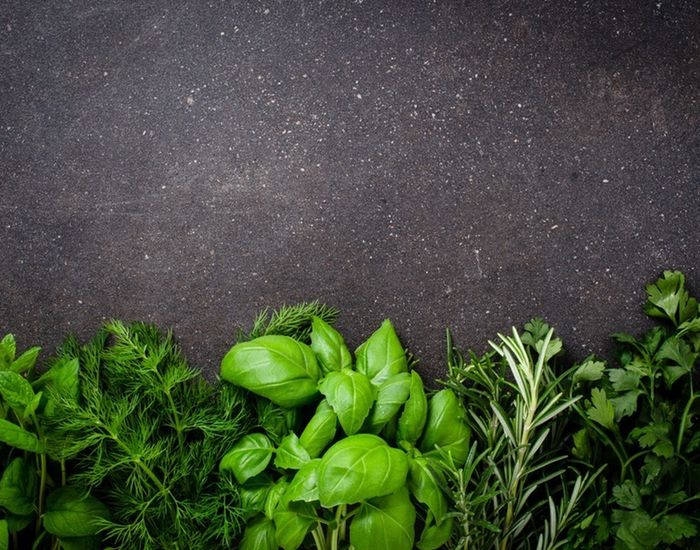 Der er to typer af friske krydderurter: de bløde og de hårde. De kræver hver sin strategi til opbevaring, hvis du vil holde dem friske så længe som muligt