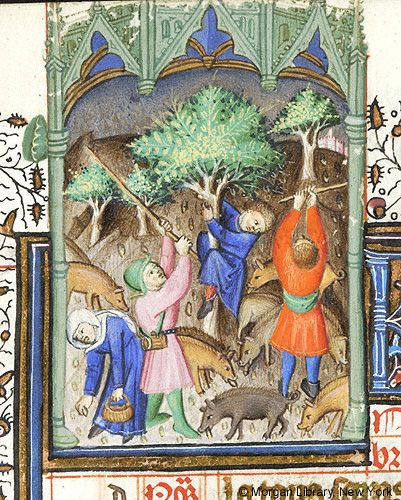 Book of Hours, MS M.64 fol. 11r - Images from Medieval and Renaissance Manuscripts - The Morgan Library & Museum