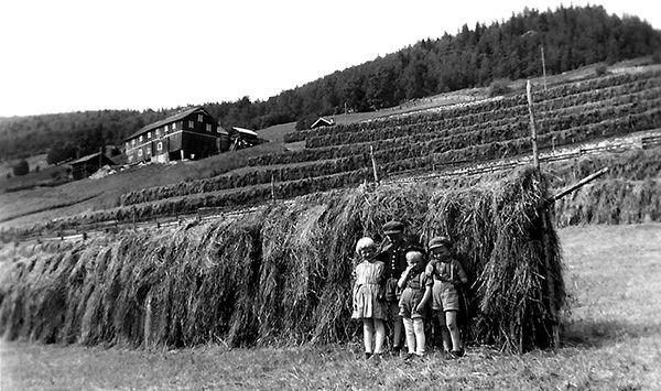 Nr. 26. Øvre Medgard, 1953. Frå venstre: Ingrid, Håkon, Magne og Olav Medgard. Utlånt av Håkon Medgard