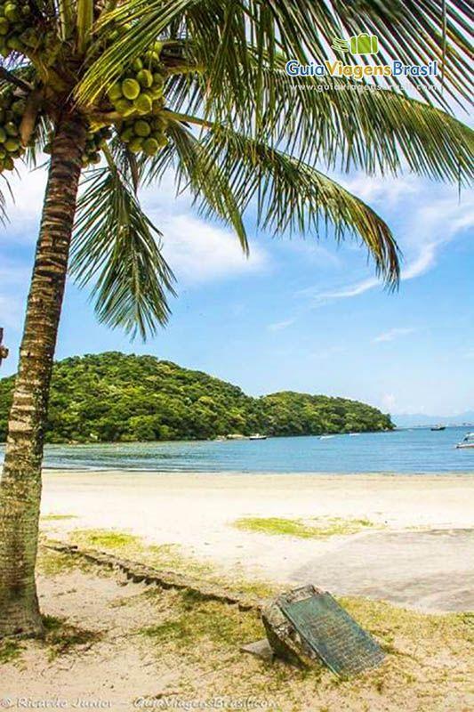 A escapadinha do final de semana para quem está em Curitiba, pode ser a Ilha do Mel. Um recanto doce e tranquilo.  Confira >>> http://www.guiaviagensbrasil.com/pr/ilha-do-mel/