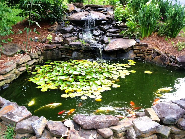 17 best ideas about koi ponds on pinterest koi fish pond for Outdoor goldfish pond ideas