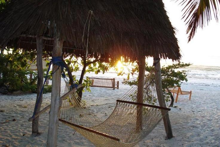 Twisted Palms Lodge  Bwejuu, on the oriental coast of Zanzibar, Zanzibar, Tanzania