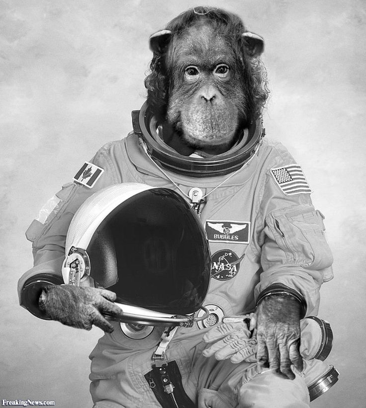 astronaut in space lyrics - photo #47