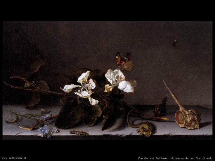 van_der_ast_balthasar_502_still_life_with_apple_blossoms.jpg (1024×768)