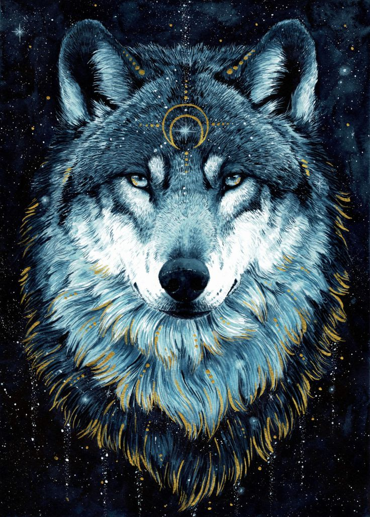 In The Darkness Wolf  Animals Poster Print | metal posters - Displate