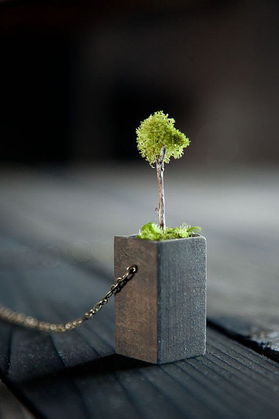 tiny little mossy tree pendant: Pendant Necklace, Trees Necklaces, Moss Trees, Pendants Necklaces, Tree Necklace, Trees Pendants, Wear Natural, Natural Moss, Miniatures Gardens