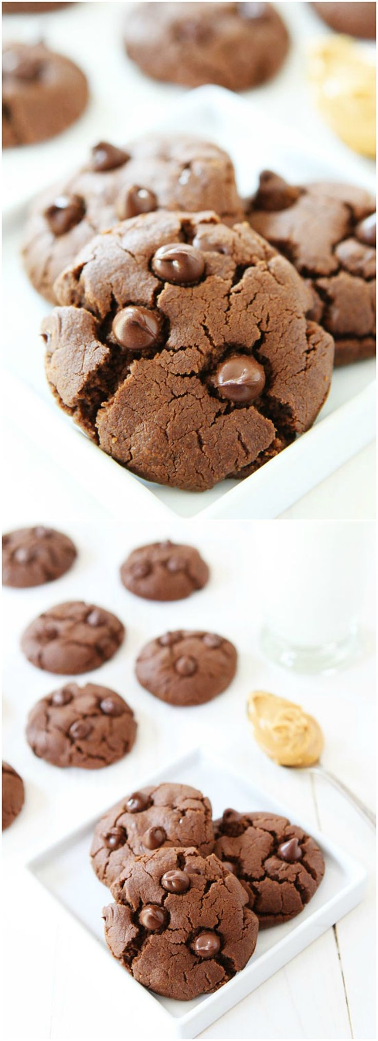 Flourless Chocolate Peanut Butter Cookie Recipe on twopeasandtheirpod.com You will never know these rich and soft cookies are gluten-free! They are SO good!