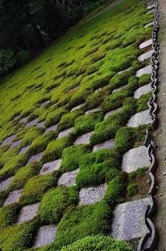 Checked Garden Tofuku-ji #japan #kyoto  http://www.japanesegardens.jp/gardens/famous/000041.php