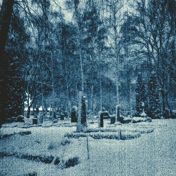 Uppsala gamla kyrkogård  Bild: @molinmalin