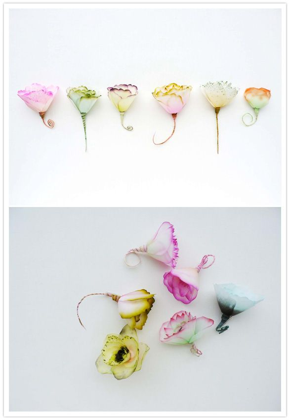 Paper flowers / Lyndie Dourthe just pinning this as inspiration :)