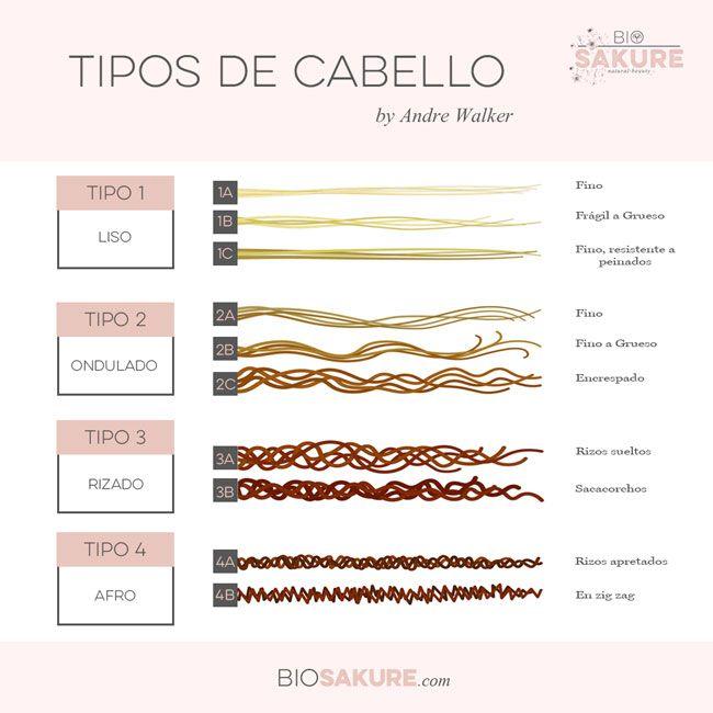 Tipos de cabello rizado clasificación andre walker
