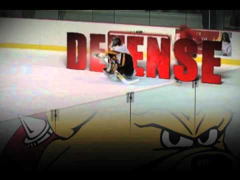 Ferris State University College Hockey TV Commercial - YouTube