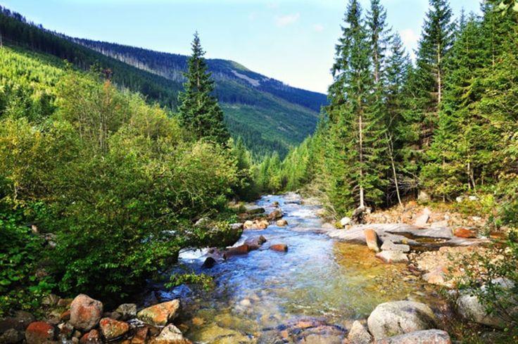 Krkonose Nationaal Park in Tsjechië