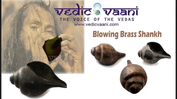 Blowing Shankh, Hindu Puja Items and Vessels Online, Vedicvaani.com buy hindu puja vessels and items at low price, purchase puja bartan for sale. Diyas, oil lamps, cotton wicks for poojas.