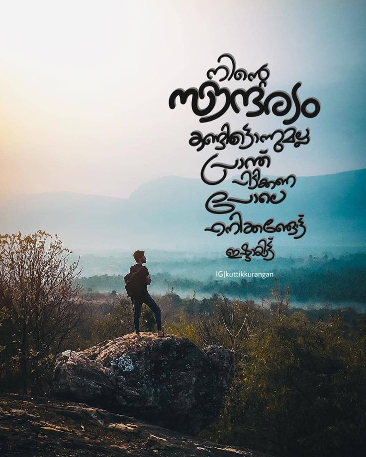 Alla pinne 😜 Malayalam quotes, Quotes, Soulmate