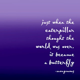 One of my favourite quotes and reason a butterfly is part of my tattoos ♥
