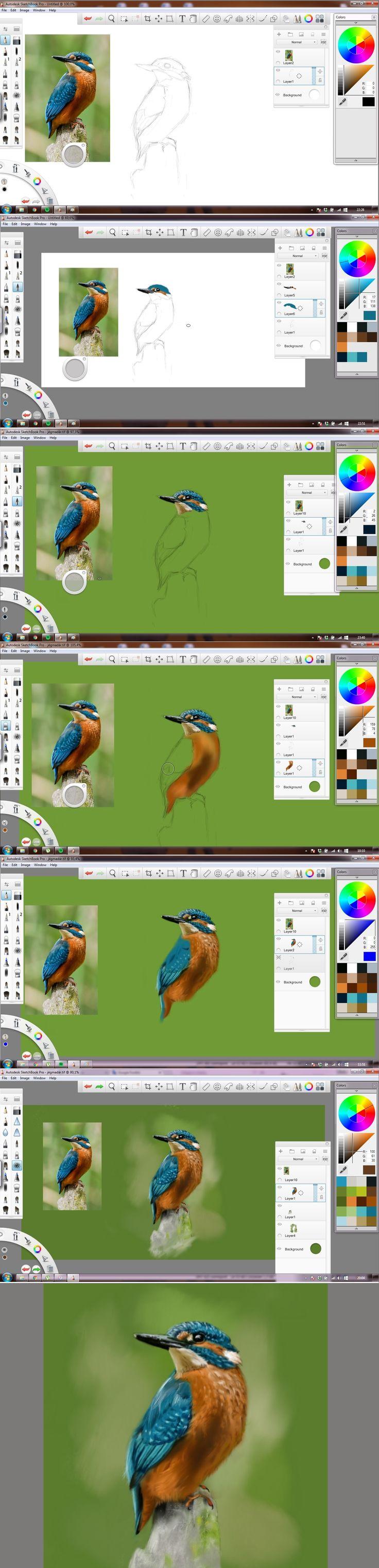Madárka szállott rája is... :D / Step-bystep of a kingfisher