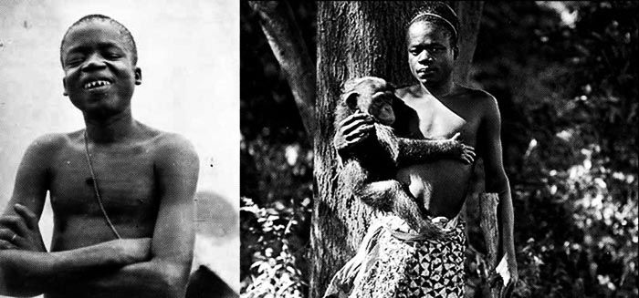 Ota Benga en el Zoo del  Bronx Ota Benga (1881 or 1884 - March 20th, 1916) was a member of the Batwa pygmy from Congo ethnic group exhibited in 1904 at the Universal Exposition in St. Louis and later exhibited at the Bronx Zoo with a trained orangutan, named Dohong. The exhibition aimed to promote the theory that man evolved from monkey and other theories like eugenics and scientific racism.