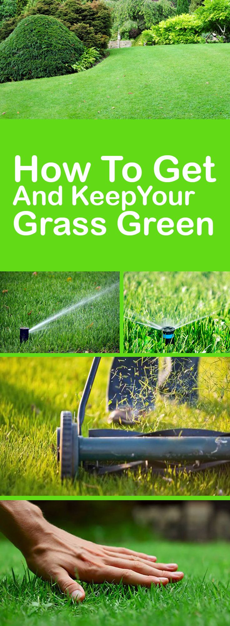 How To Get And Keep Your Grass Green