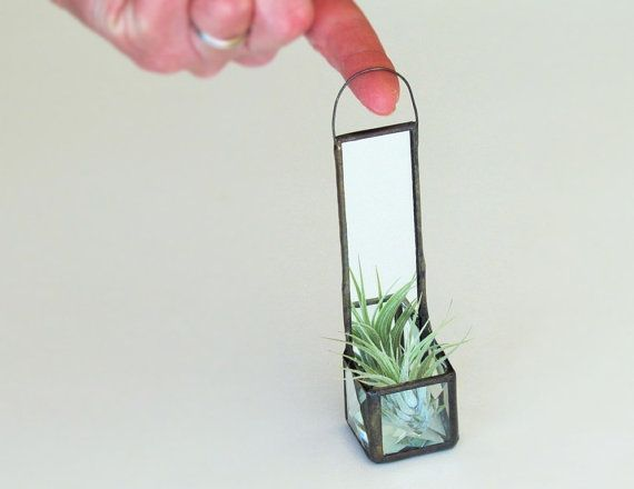 Mini Wall Hanging Air Plant Holder Mirror Clear Beveled Stained Glass Cubed Box Planter Black Patina