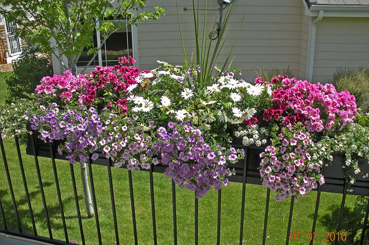 Deck railing planter flower box planters and container garden ideas pinterest railing - Flower boxes for railings ...