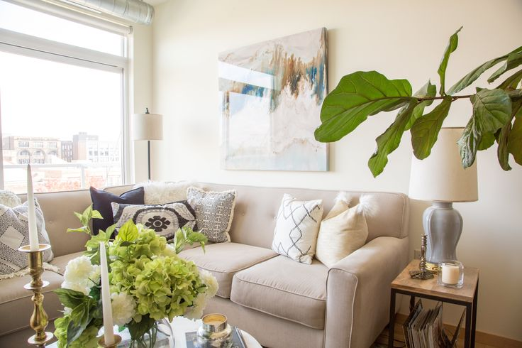 Colie found this fig leaf plant on Craigslist. The large branch that hangs over the couch helps divide the rooms. It lives in a big basket that she found at Homegoods.