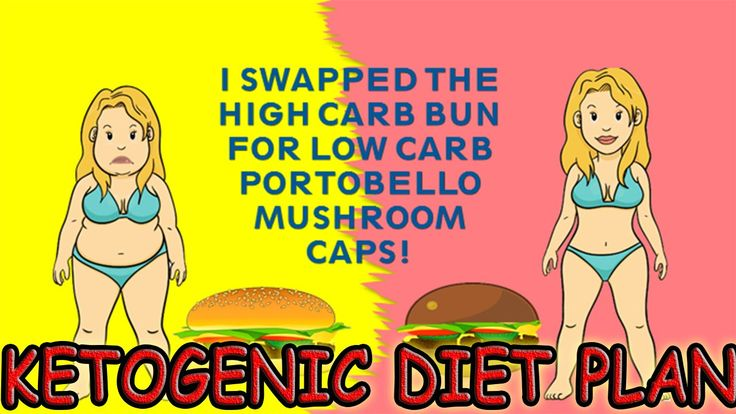 What Is The Ketogenic Diet Plan - 3 Day Ketogenic Diet Plan Quick Start