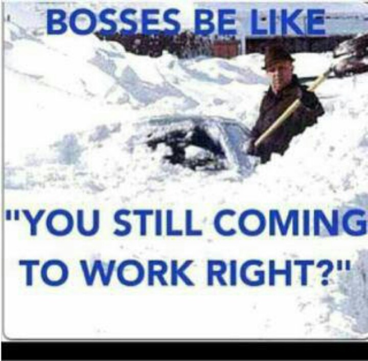 "Bosses be like.....""you still coming to work right?""Funny Things, Laugh, Quotes, Winter Wonderland, Snow, So True, Funny Stuff, Humor, Storms"