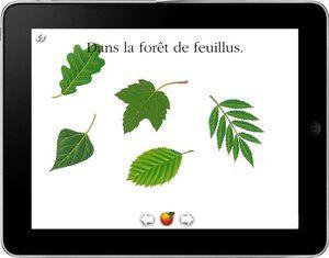 Les applications numériques - Livres pour enfants - Gallimard Jeunesse Beautiful interactive book about the forest.