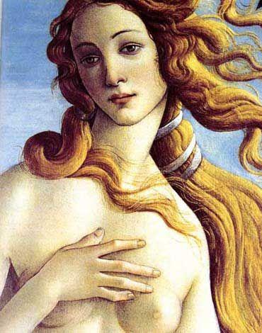 the original (detail)Botticelli Venus, Sandro Botticelli, Art Attraction, Goddesses, Botticelli Births, Uffizi Museums, Art History, Renaissance Art, Artists Arcadia