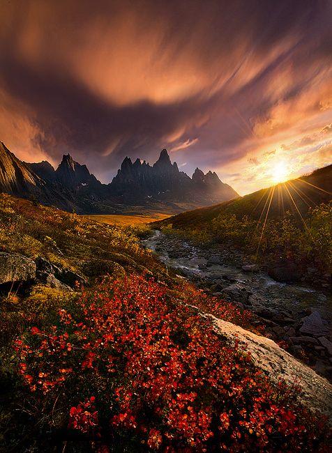 Blazing Autumn colors in the Far North, Yukon, Canada by Marc Adamus on 500px
