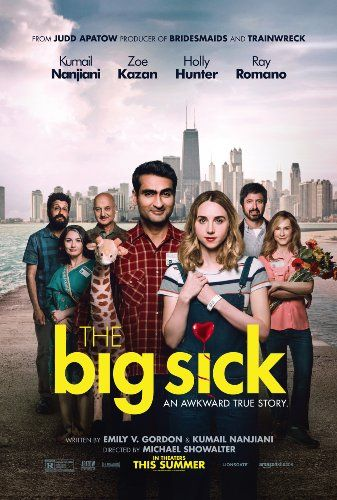 The Big Sick (2017). True story about the main star's real life where he meets a girl in a comedy club and falls for her, meanwhile his parents want to set him up in a pre-arranged marriage.  The guy and girl later break up over culturial differences, however he goes to see her when she's sick.  She ends ups in a coma, and her parents arrive, whom he's never met.  Not really funny at all, but romantic.  Stars Kumail Nanjiani,  Zoe Kazan,  Holly Hunter and Ray Romano.
