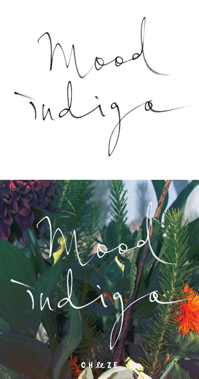 Calligrapy :: alternative graphics - PROPAGANDA :: - CHEEZE - Mood Indigo