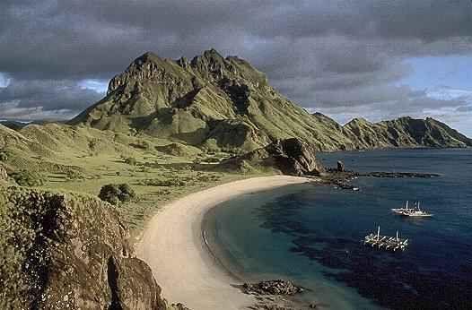 KOMODO ISLAND TOUR | Komodo dragon | Labuan Bajo Flores | Bidadari ...