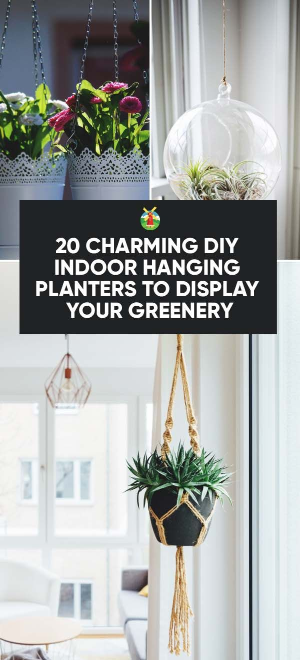 Pinterest & 20 Charming DIY Indoor Hanging Planters to Display Your Greenery ...