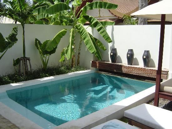 Sala samui resort and spa private plunge pool in sala for Plunge pool design uk