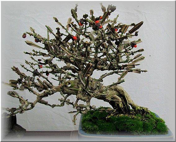 昨日は 近所の公園の盆栽展を観に行って来ました盆栽といえば形良く整った松がメインですが・・・私は赤い実が好きなので 赤い果実のついた物を主に撮って来ました柿丸い小さな柿でしたロウヤガキ盆栽でお馴染みの真っ赤に熟したロウヤガキ・・・枝垂れたロウヤガキ・・・姫リンゴ赤い果実ピラカンサ...
